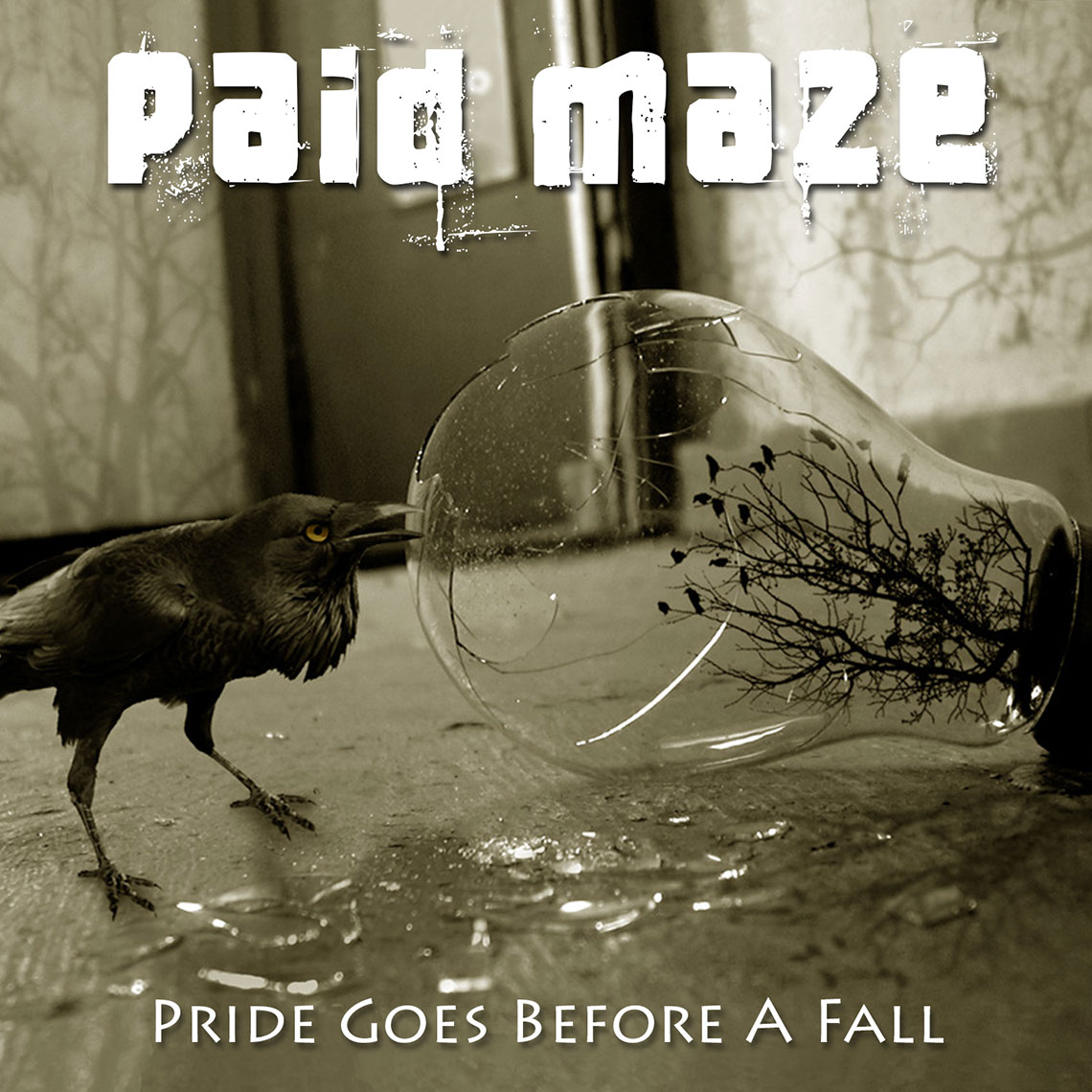 Paid Maze Album Pride Goes Before A Fall